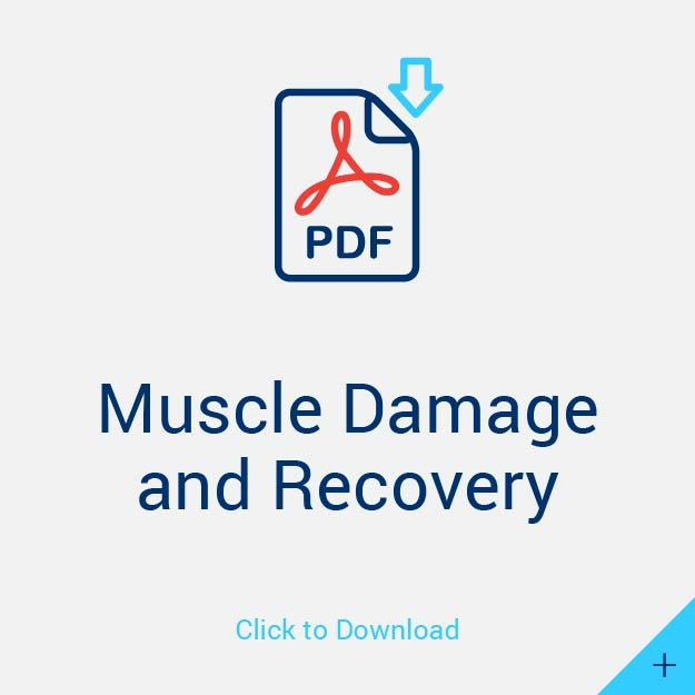 Muscle Damage and Recovery