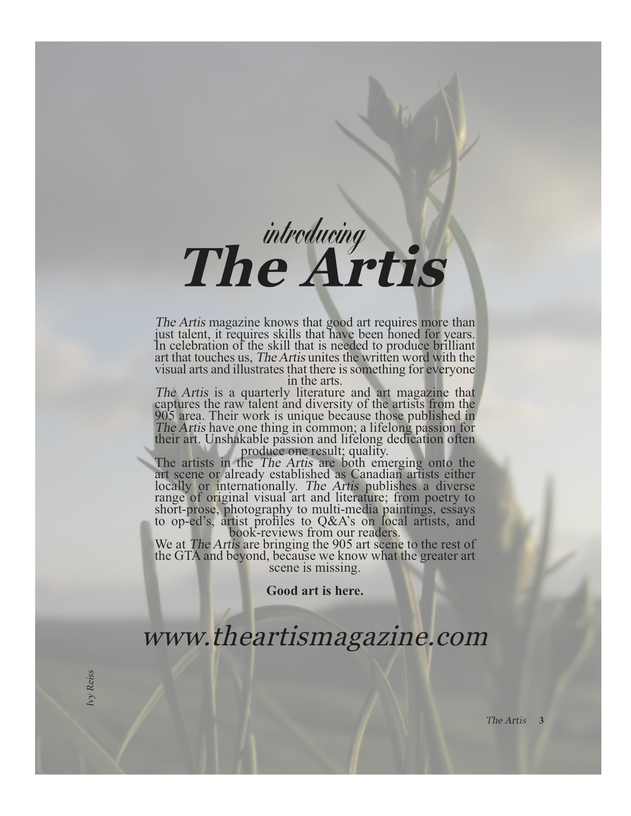 Artis 1 page 3 for site.jpg