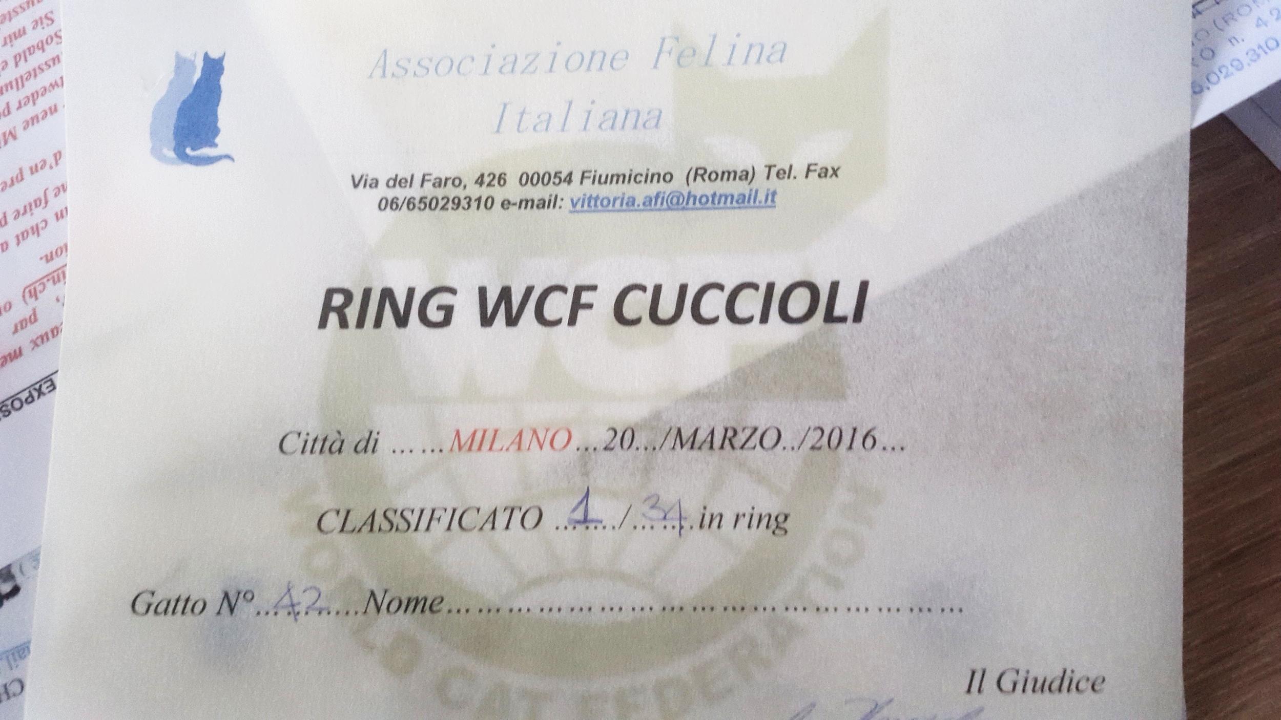 Milan mars 2016 - 1er Ring chatons s/34