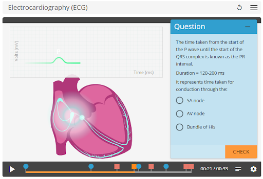 physiology heart 1.png