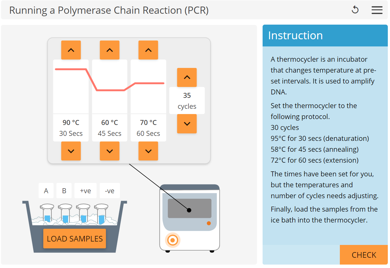 PCR.PNG