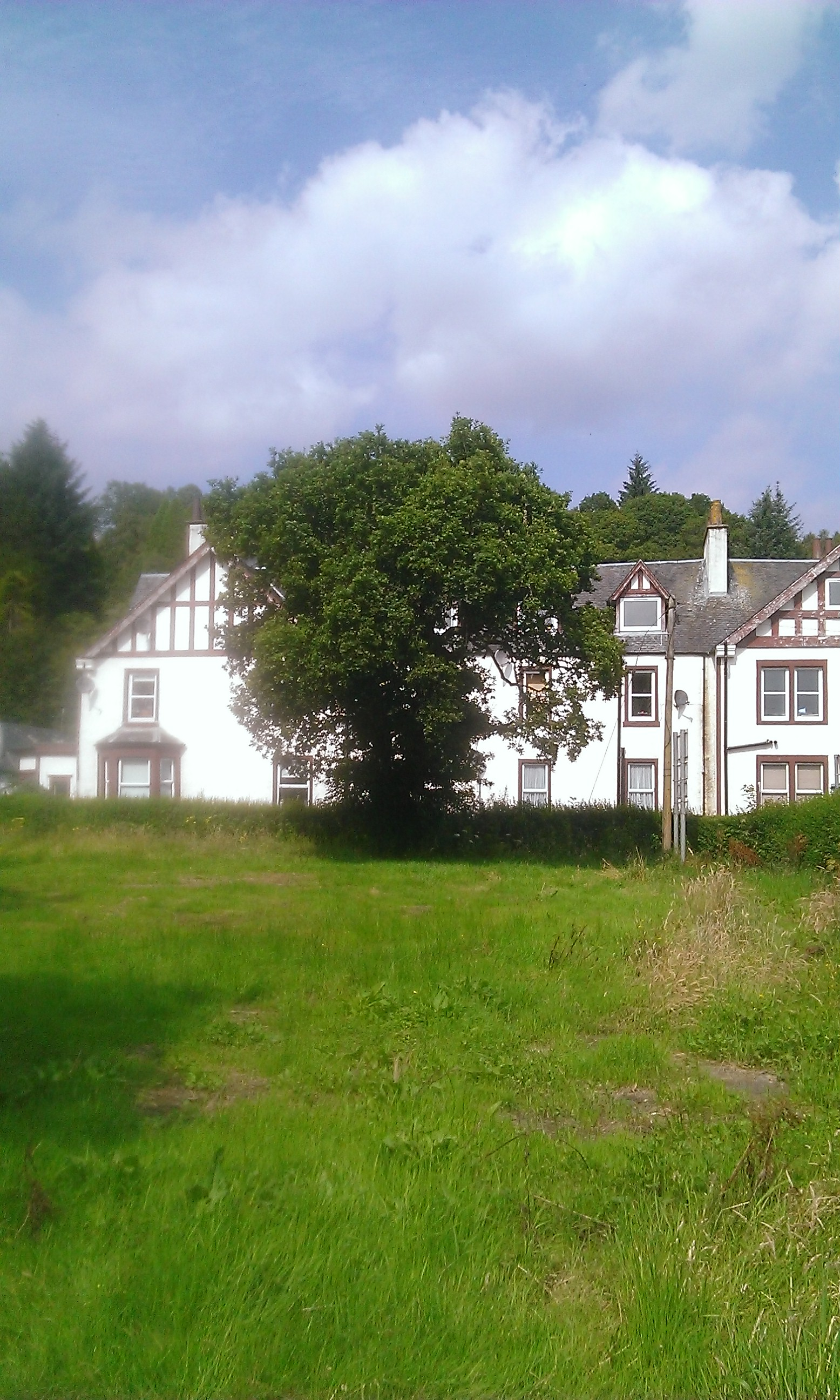 The Poker Tree, Aberfoyle