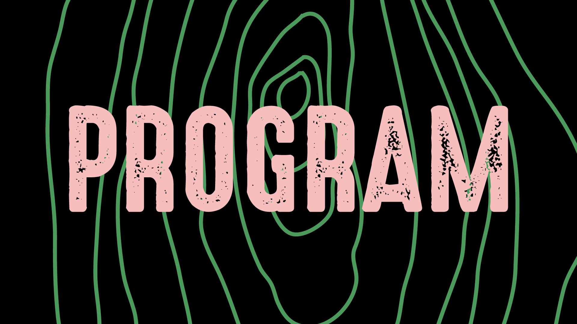 program_.png