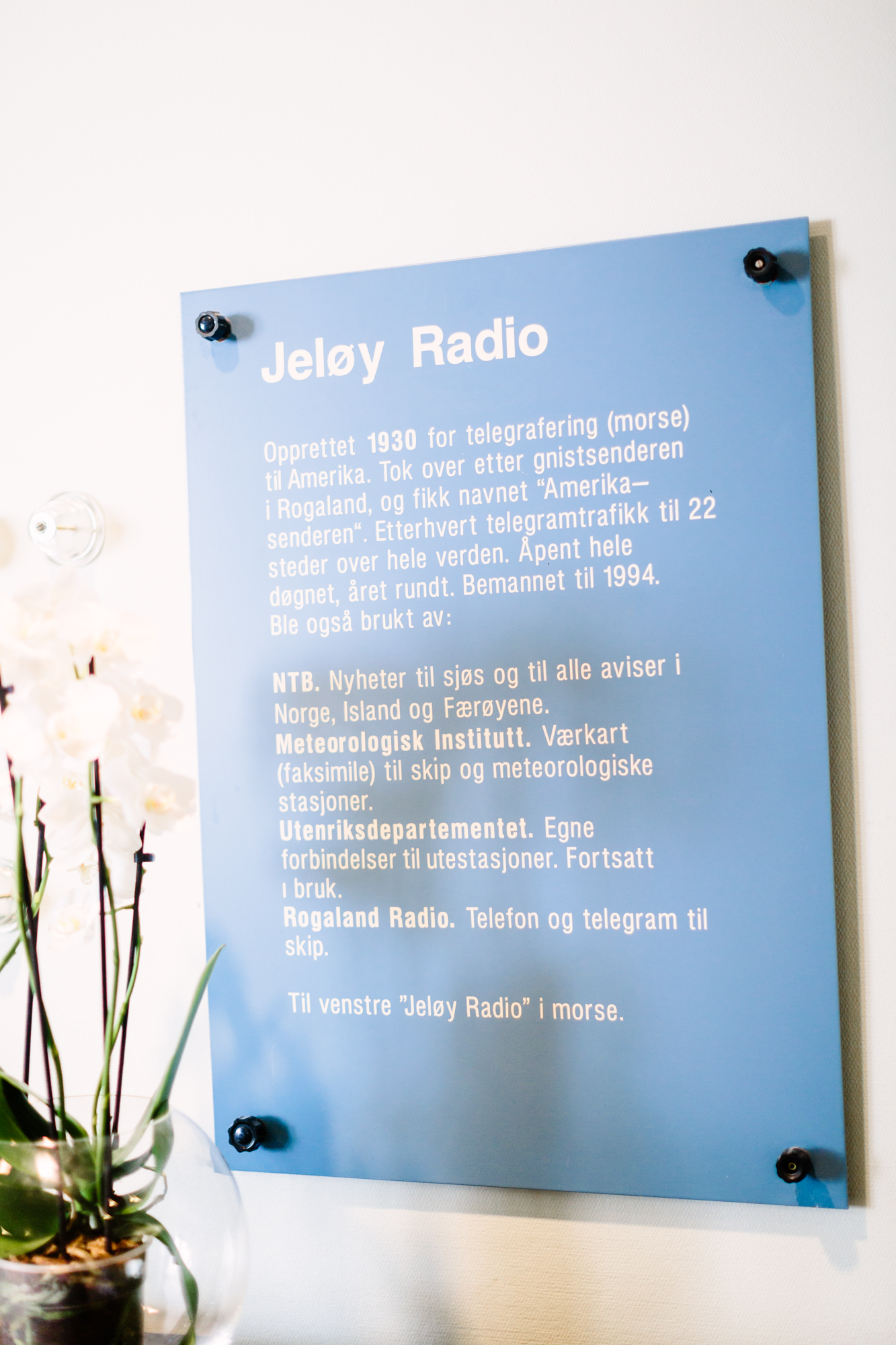 moment_studio_bryllupsfotograf_jeloy_radio8.jpg