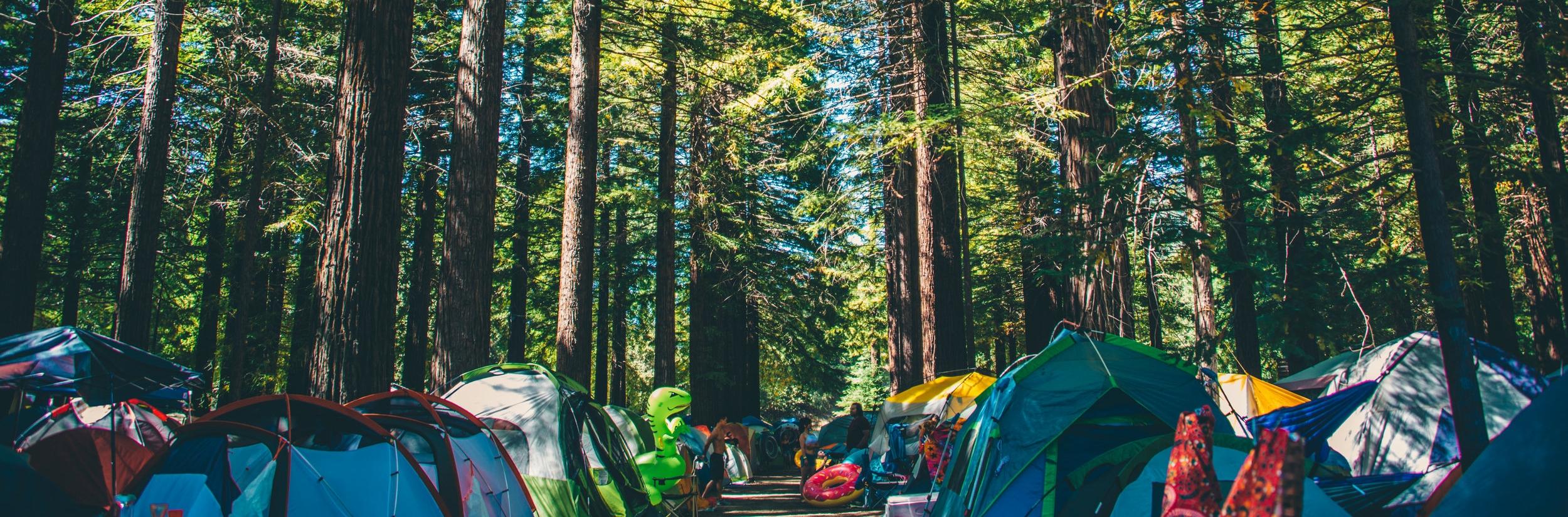 redwood-camping-festival.jpg