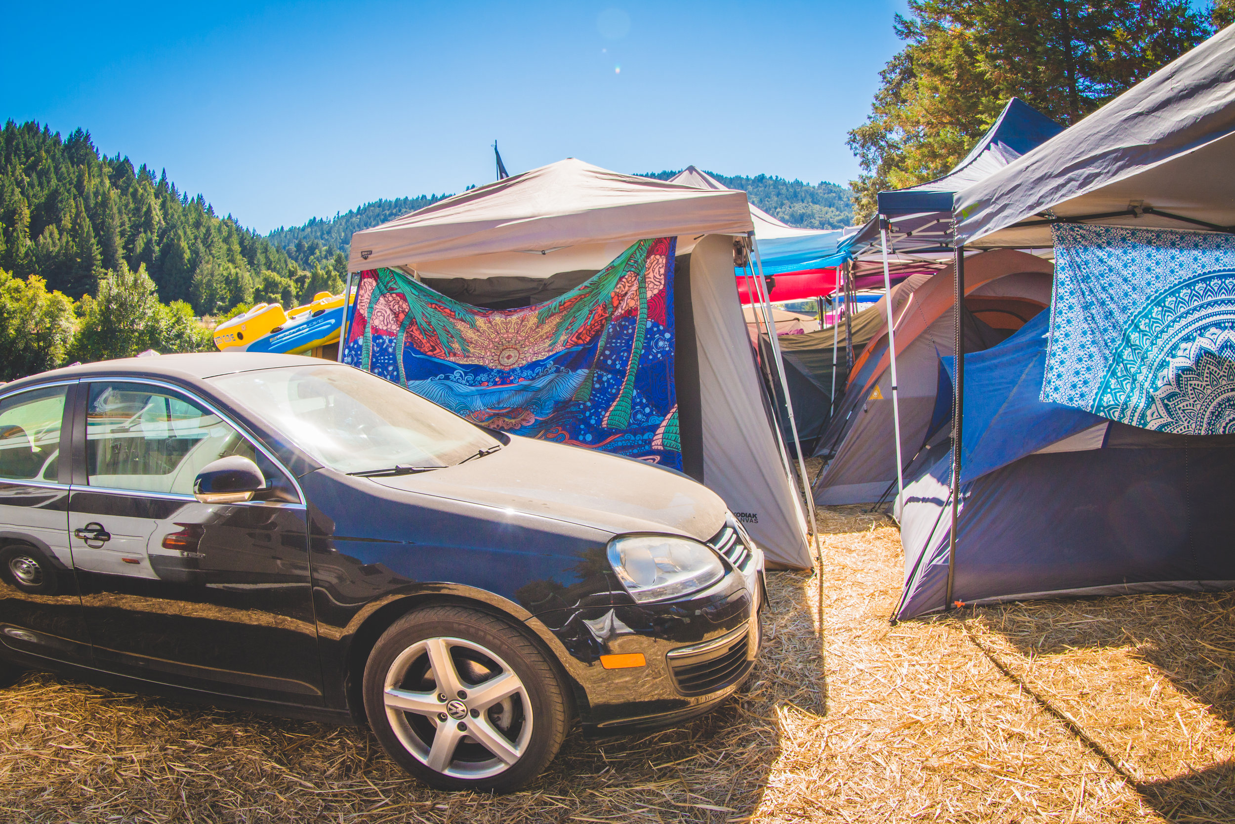 carcamping-festival.jpg