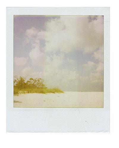 21-ClamPass-Shoreline.jpg
