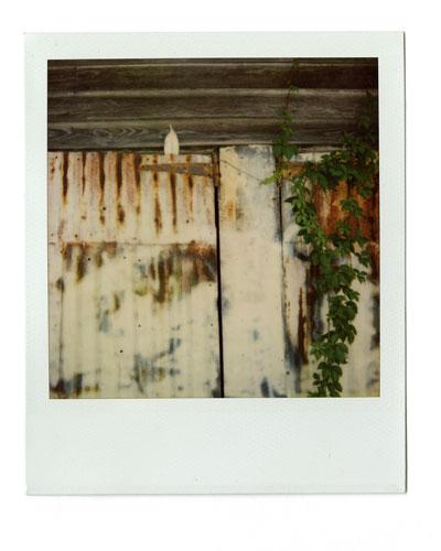 17-rustydoor01.jpg