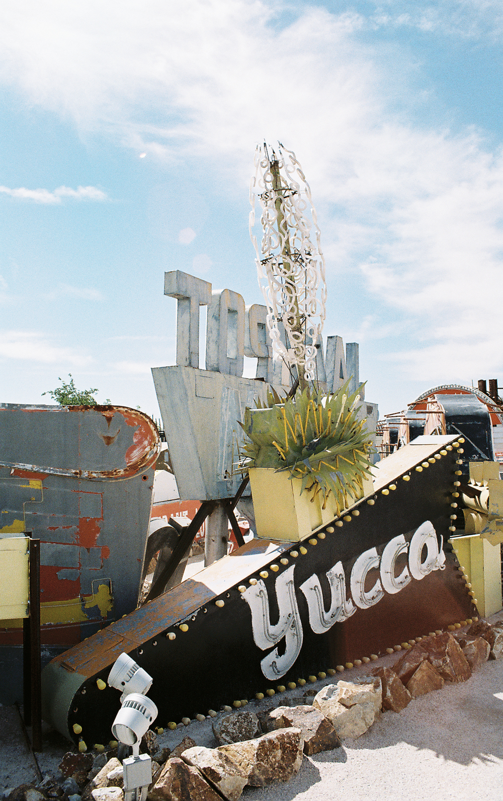 08-yucca02-web.jpg
