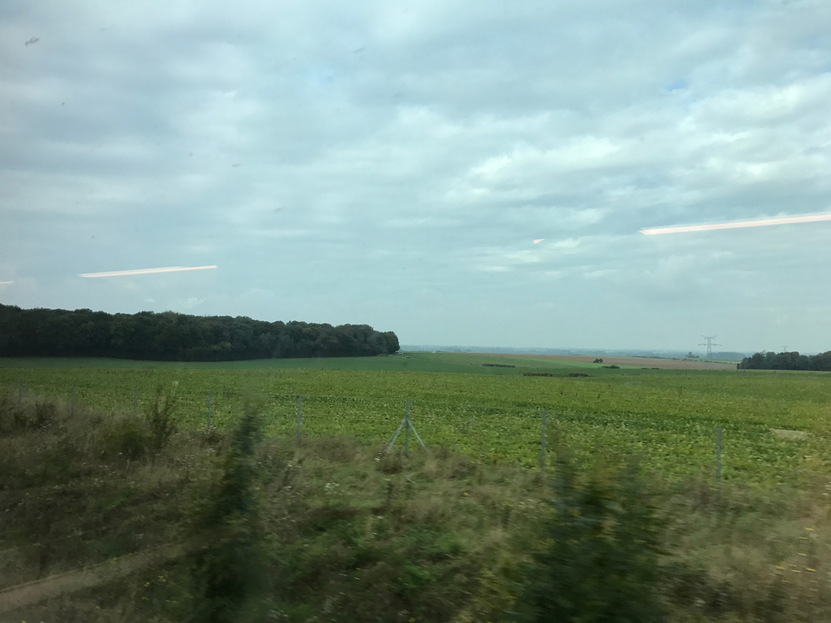 French countryside as seen from the train.