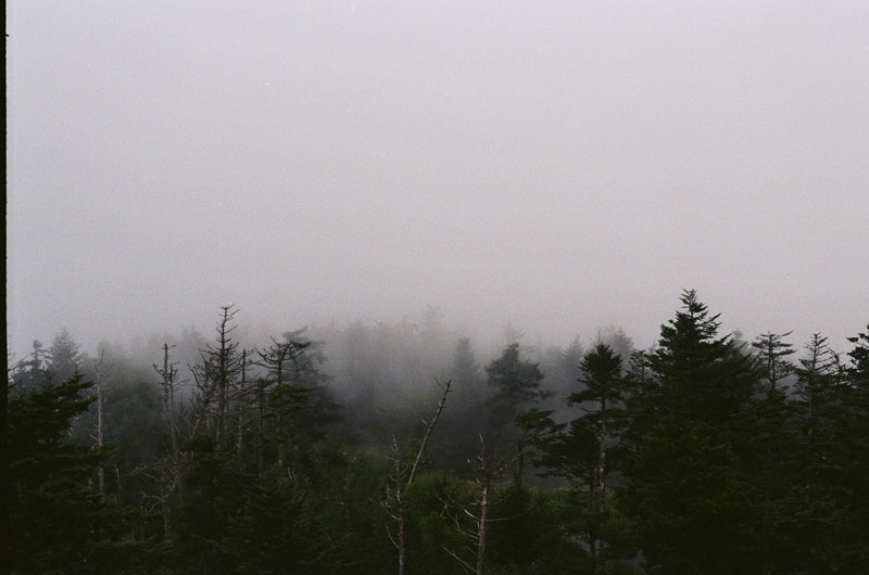 01-Fog01.jpg