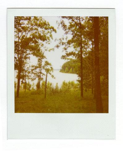 26-Mistletoe04.jpg