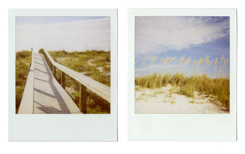 11-DunesDiptych-web.jpg