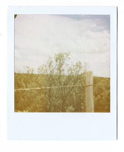 05-Amistad02-web.jpg