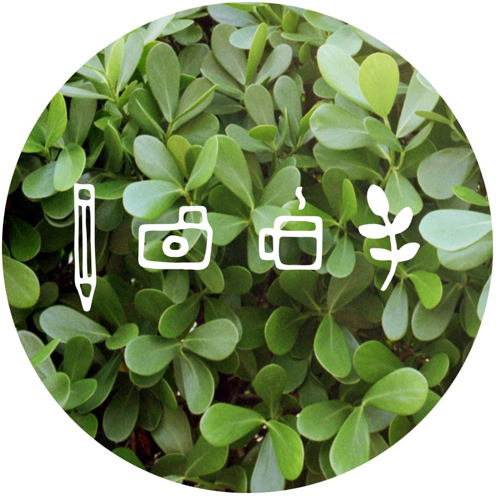 icons circle - plants.jpg