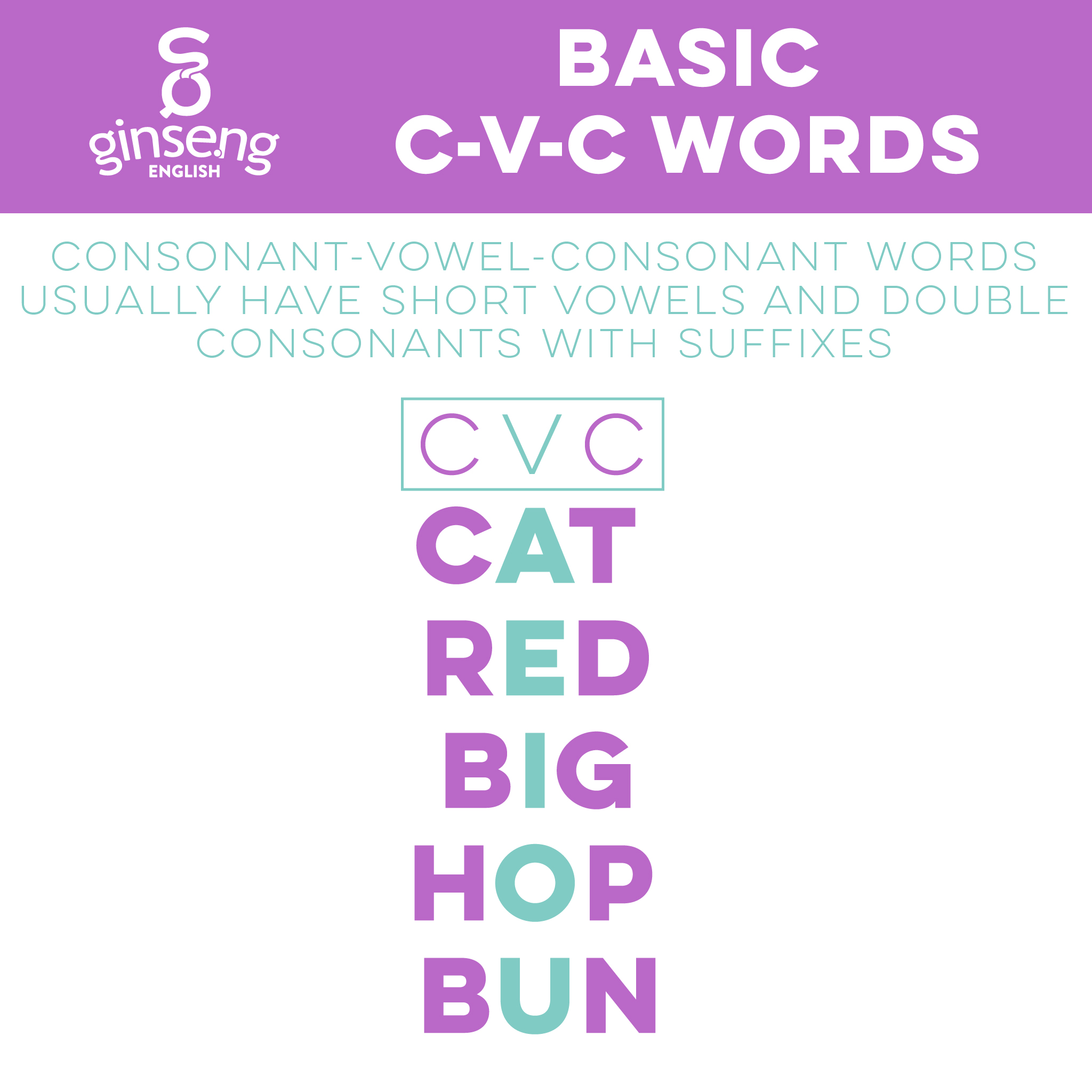 Basic CVC Words
