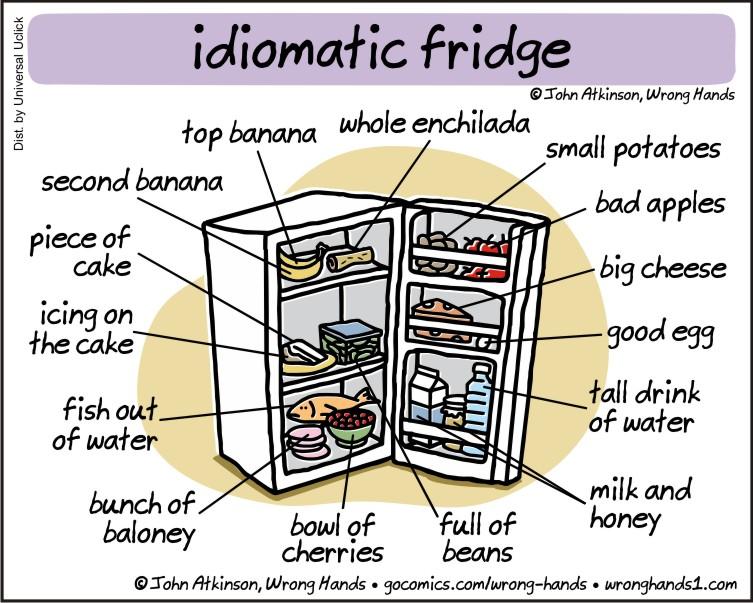 idiomatic fridge