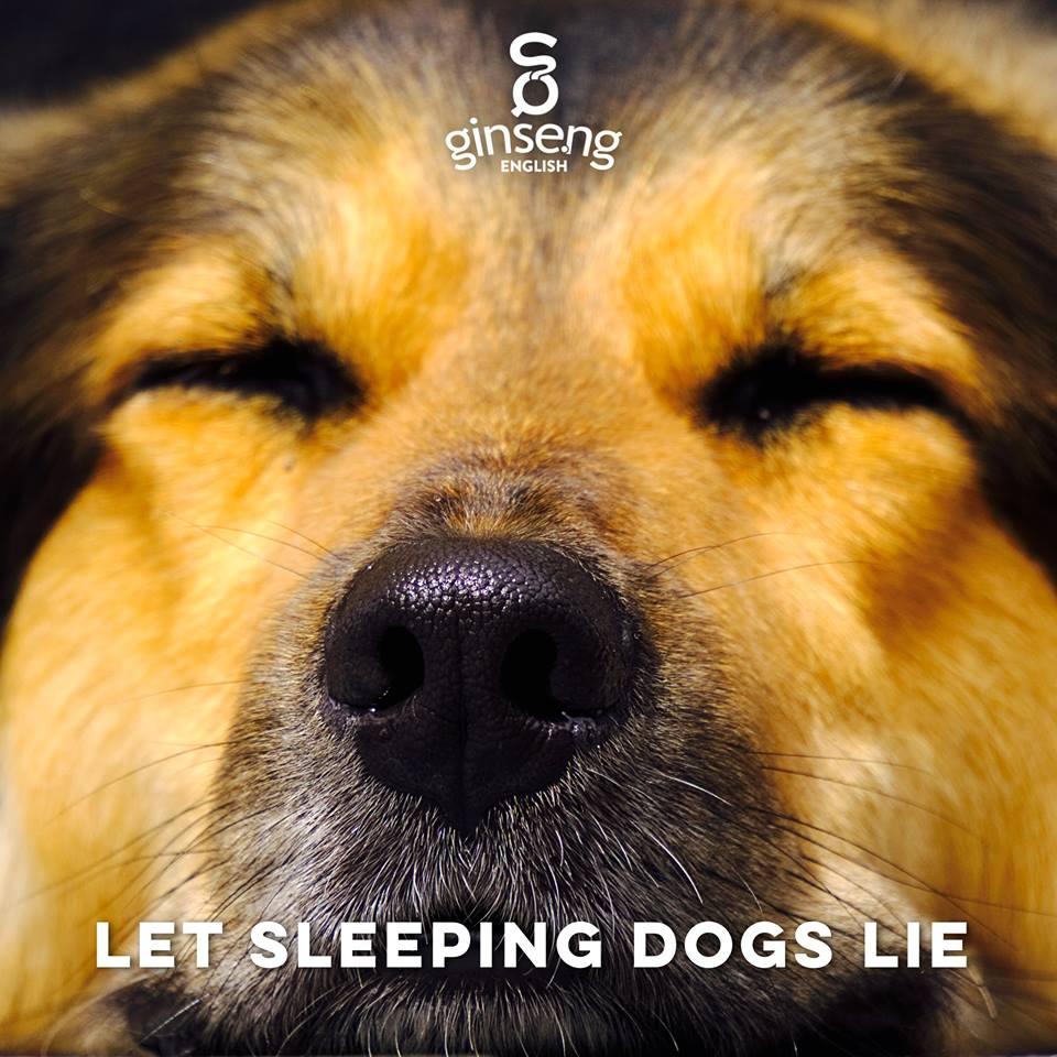 let sleeping dogs lie .jpg