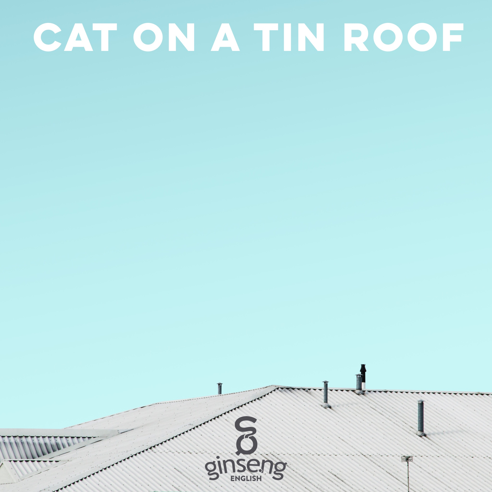 cat on a tin roof.PNG