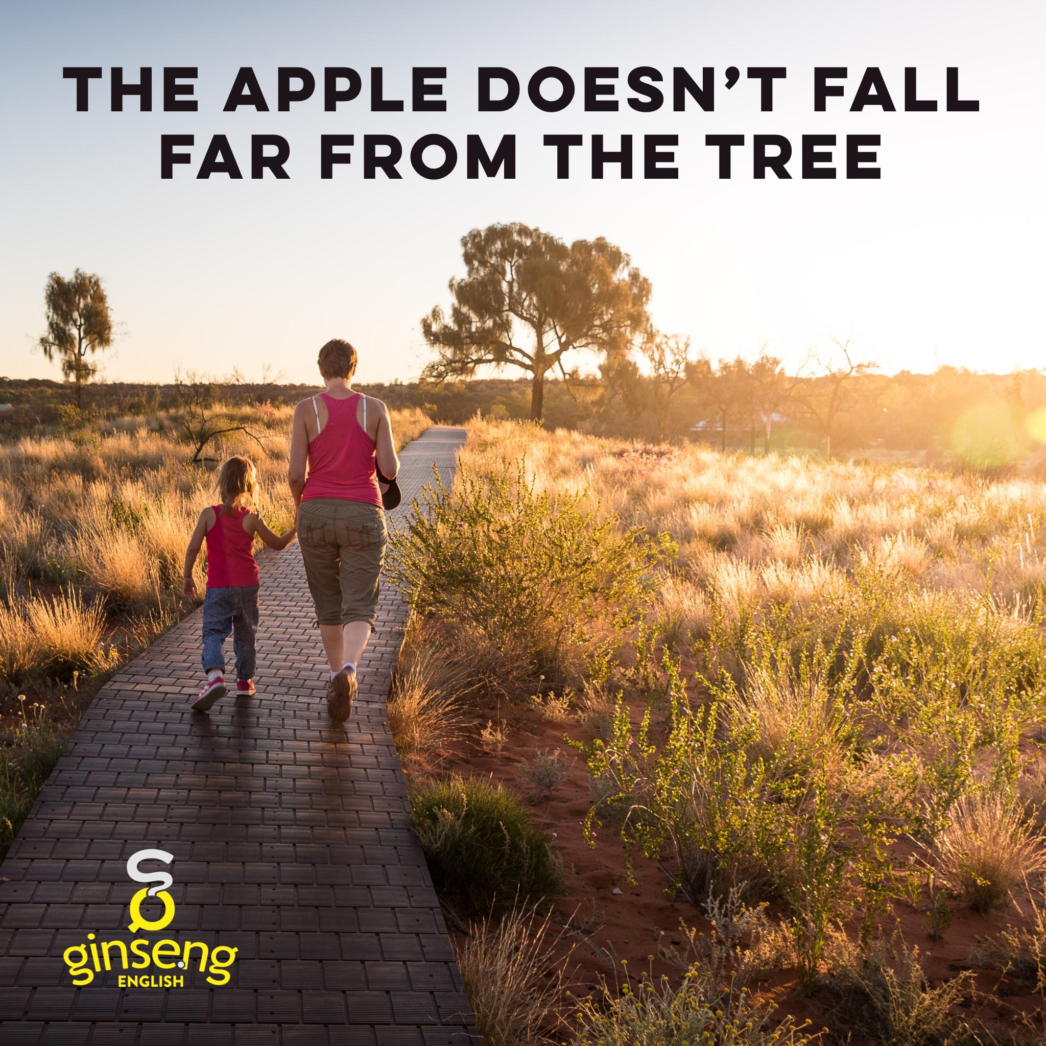 apple fall tree.PNG