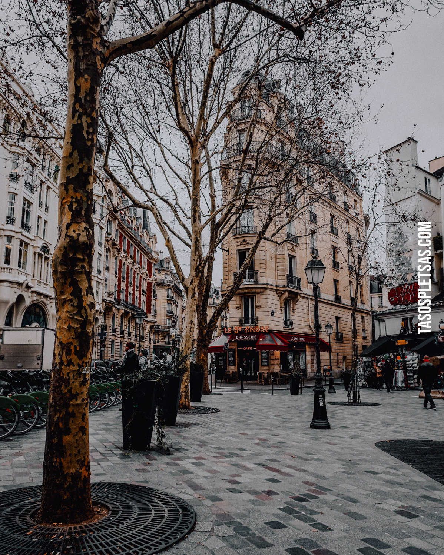 ParisWEB-Paris-DSC08273.jpg