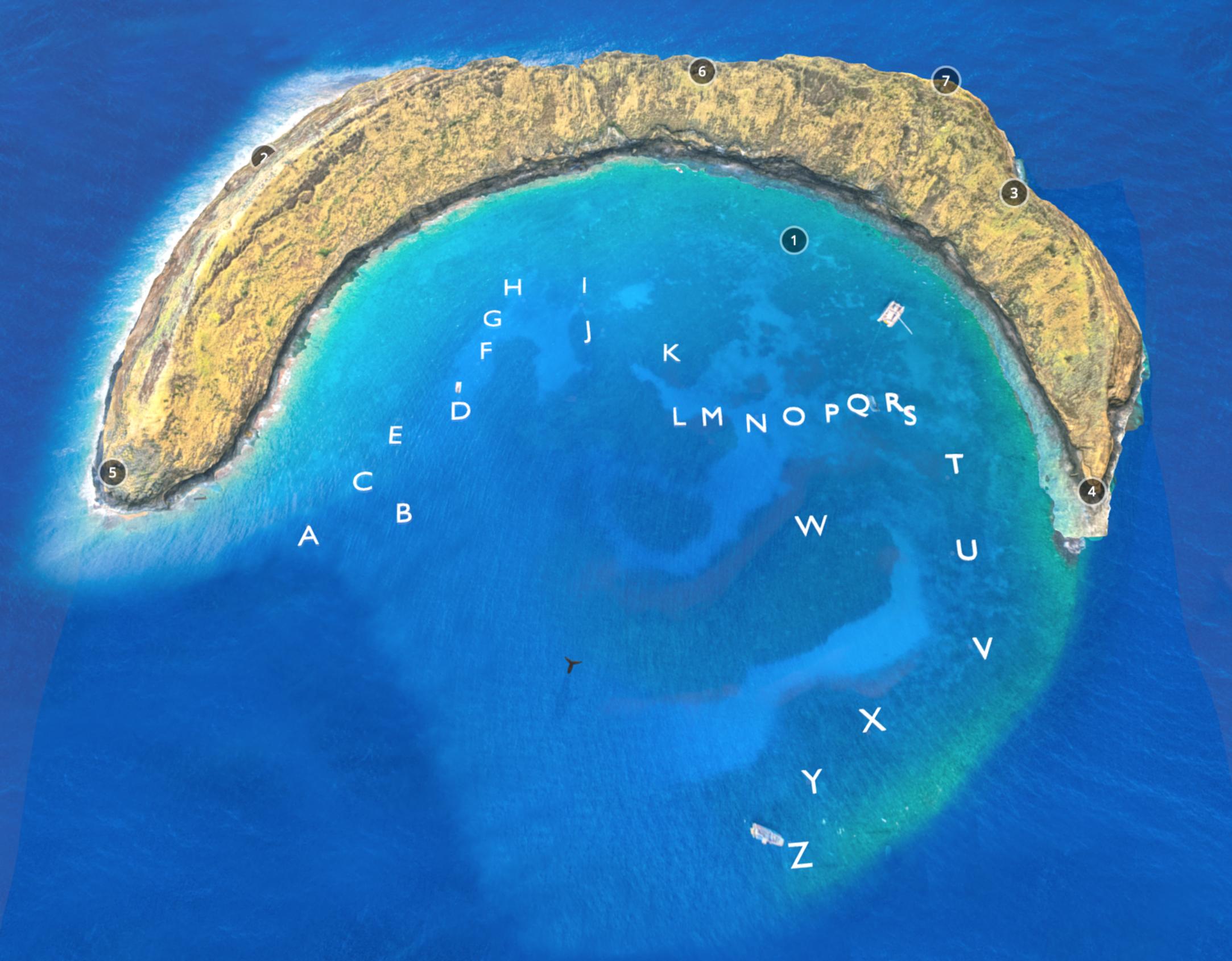 Molokini_island_photogrammetry_scan.png
