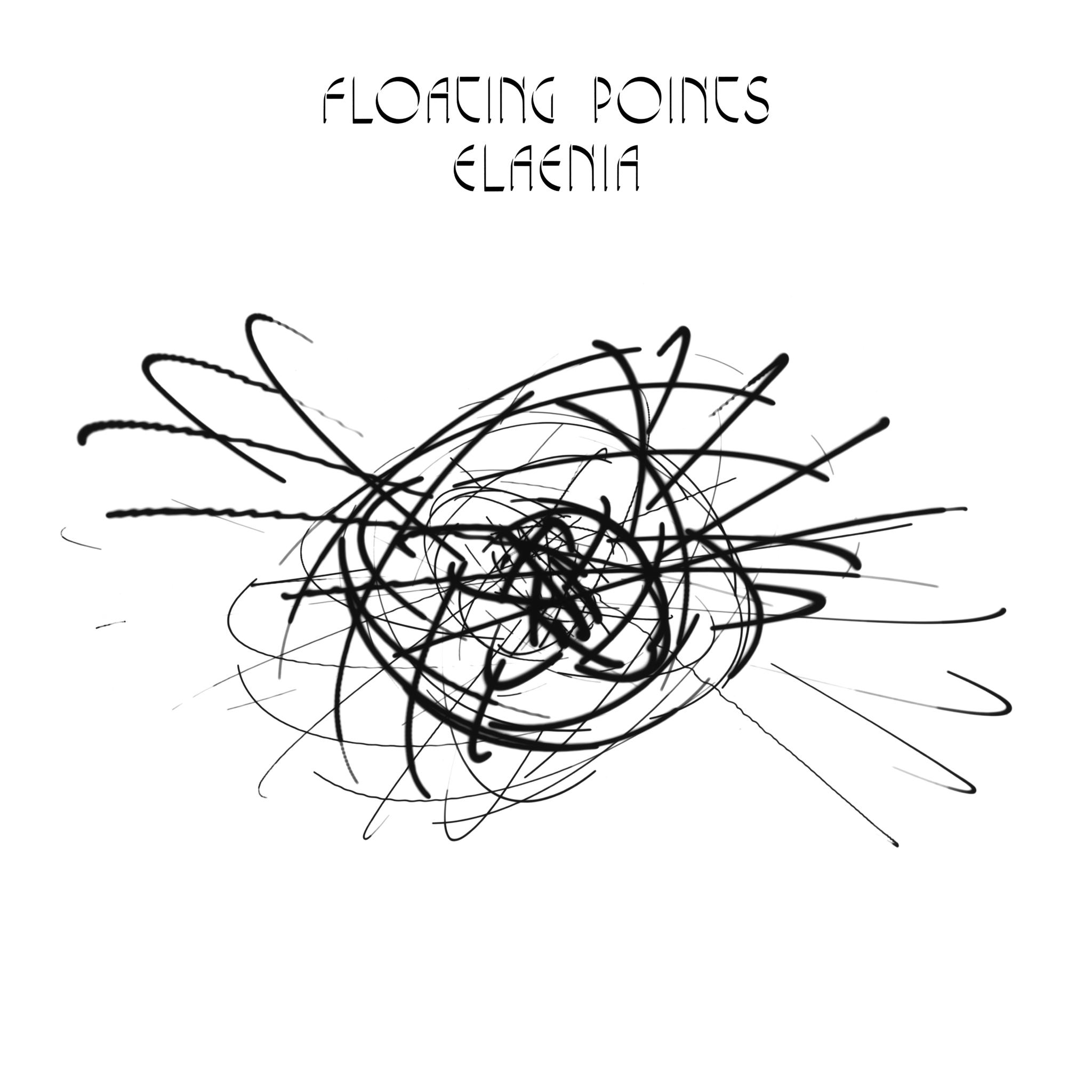 Floating-Elaenia.jpg