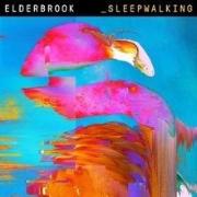Elderbrook_Sleepwalking.jpg