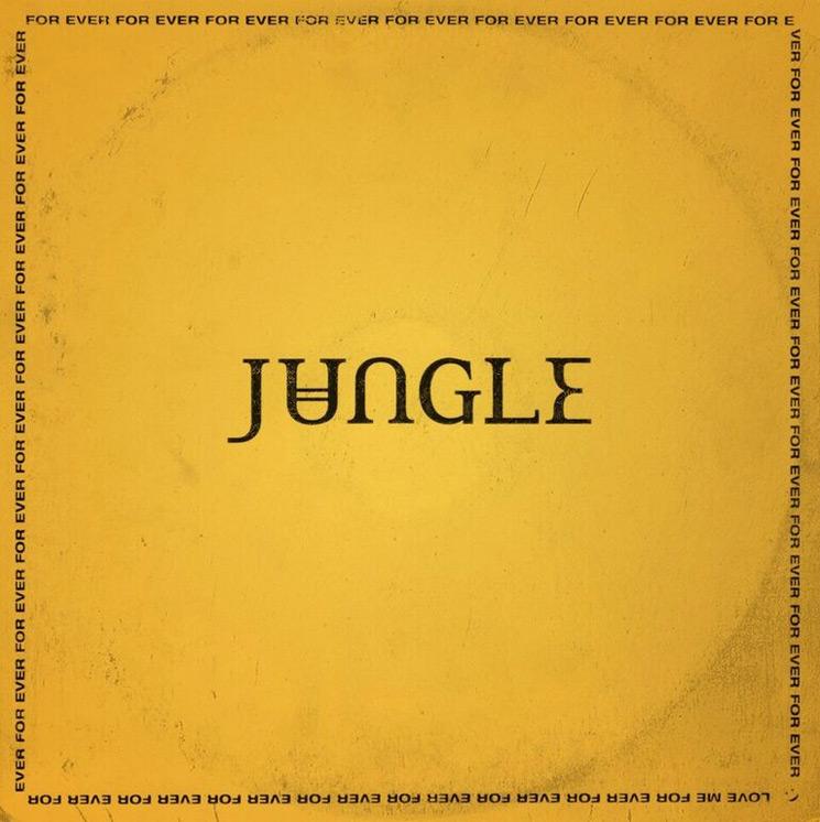 jungle_3.jpg