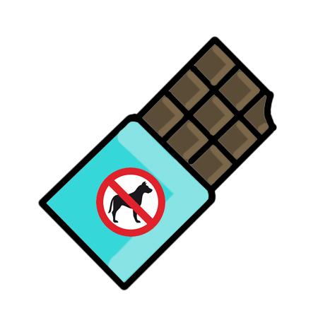 Chocolate_no_dog.jpg