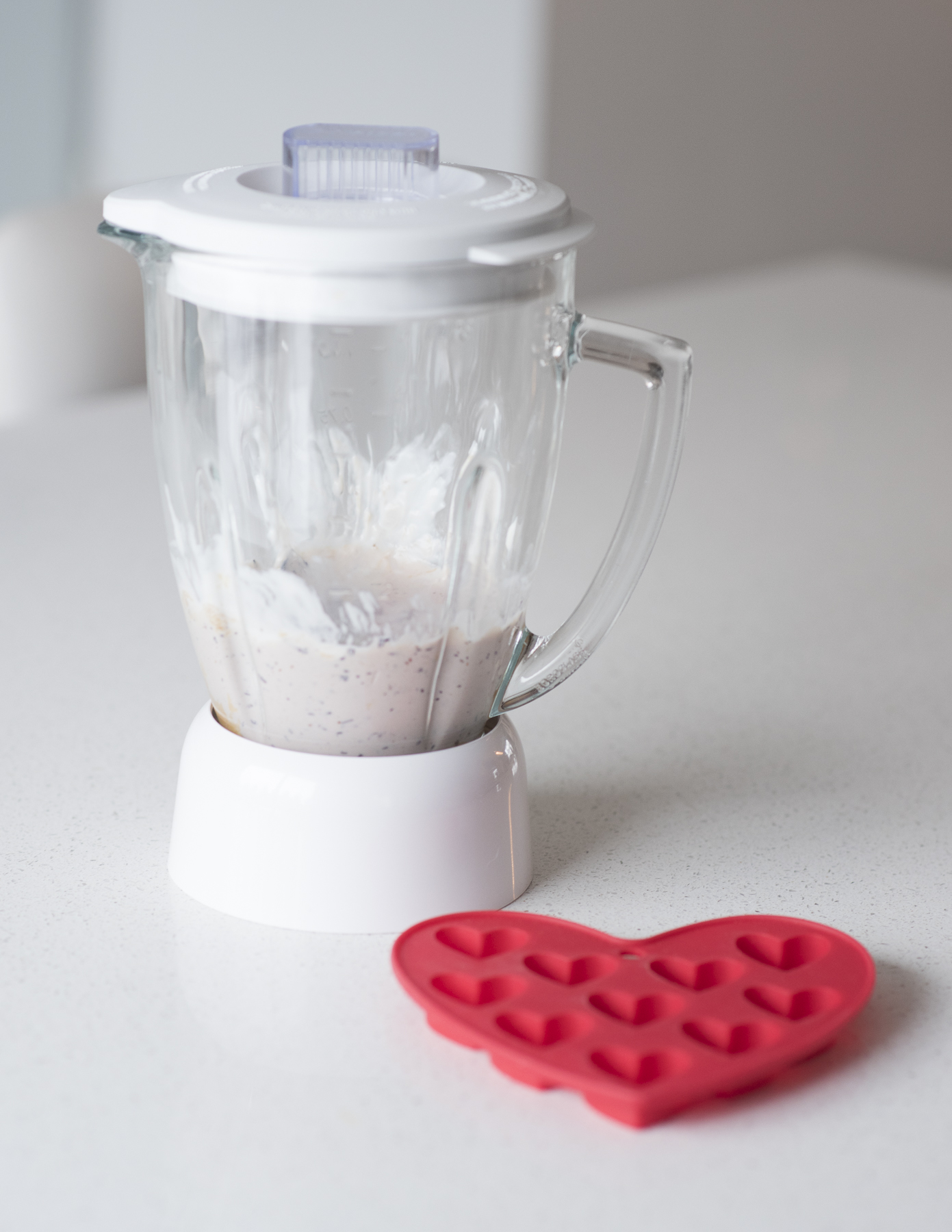 yogourt treats for dogs blender-1.jpg