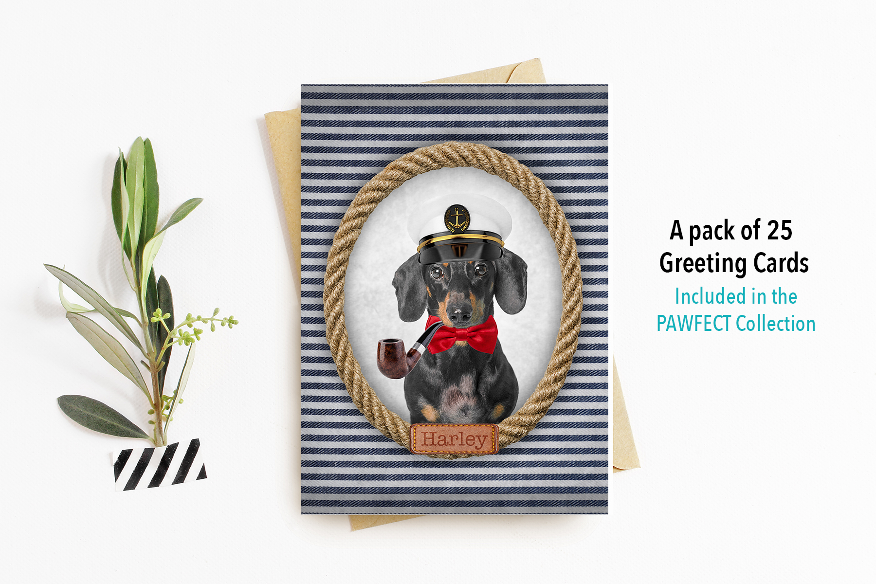 Greeting-Cards-Vintage-Pawtraits.jpg