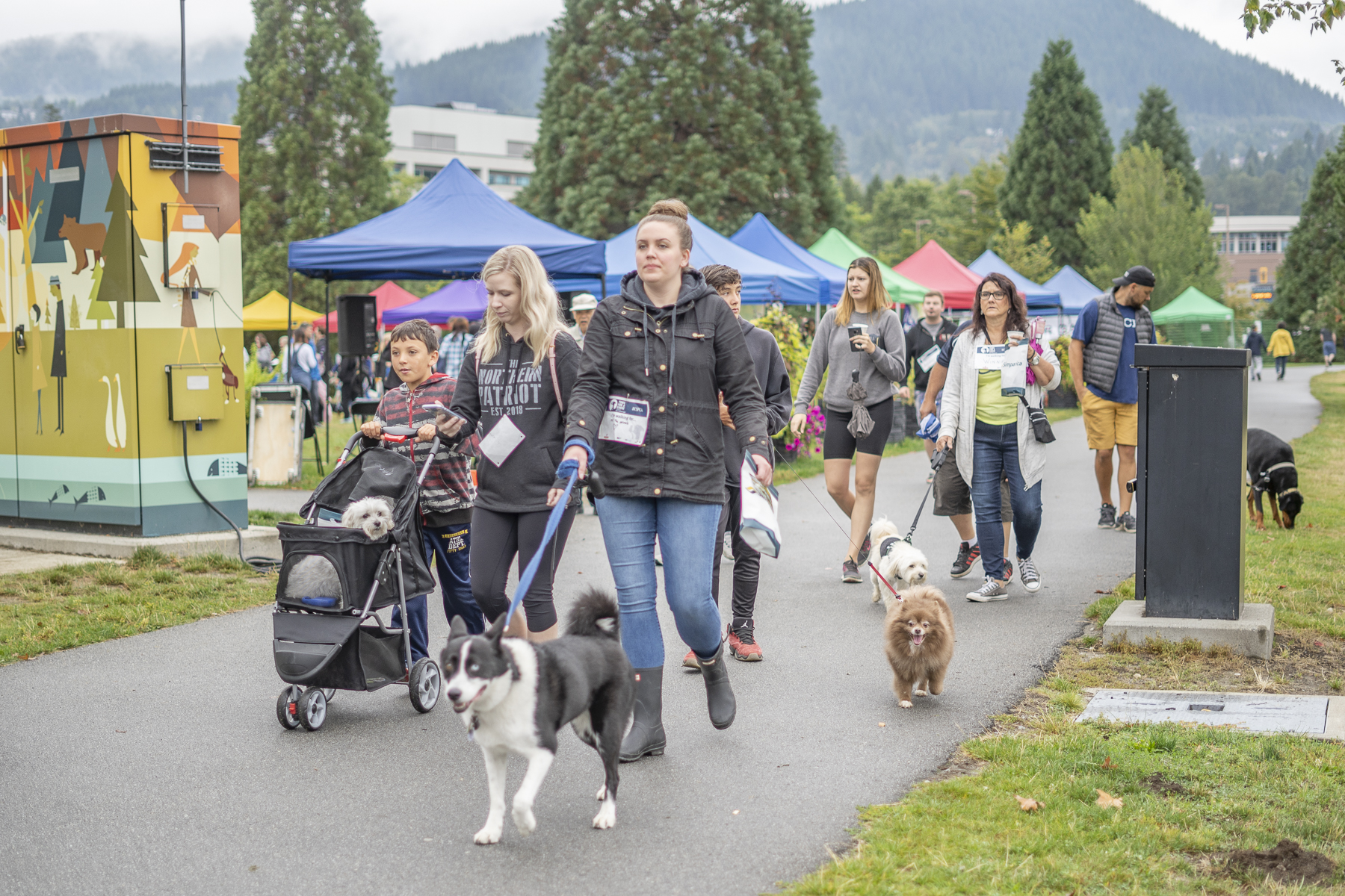 2019_Paws_for_a_Cause_Coquitlam_-12.jpg