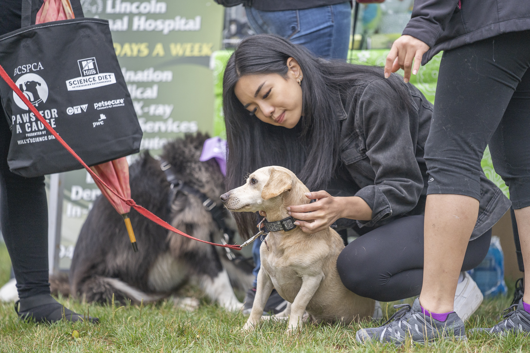 2019_Paws_for_a_Cause_Coquitlam_-18.jpg