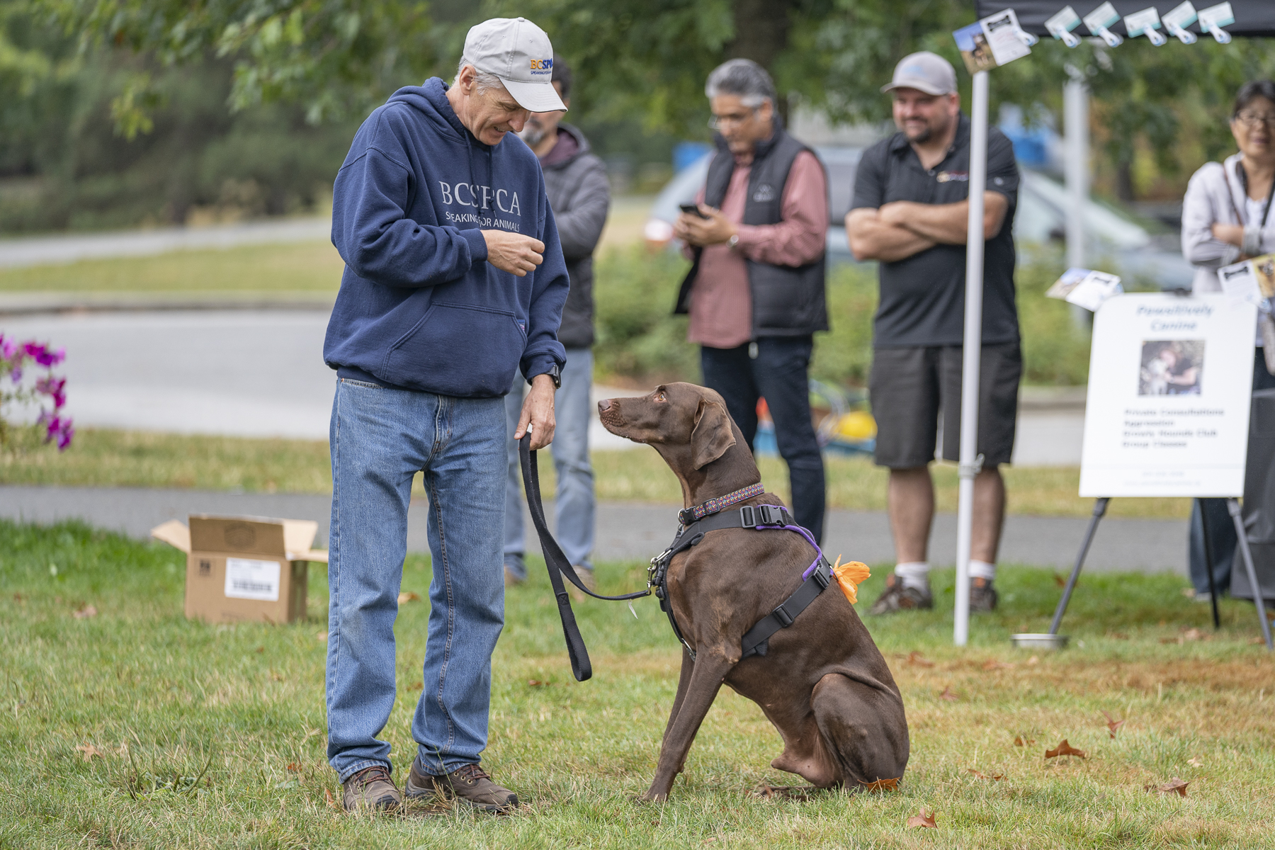 2019_Paws_for_a_Cause_Coquitlam_-28.jpg