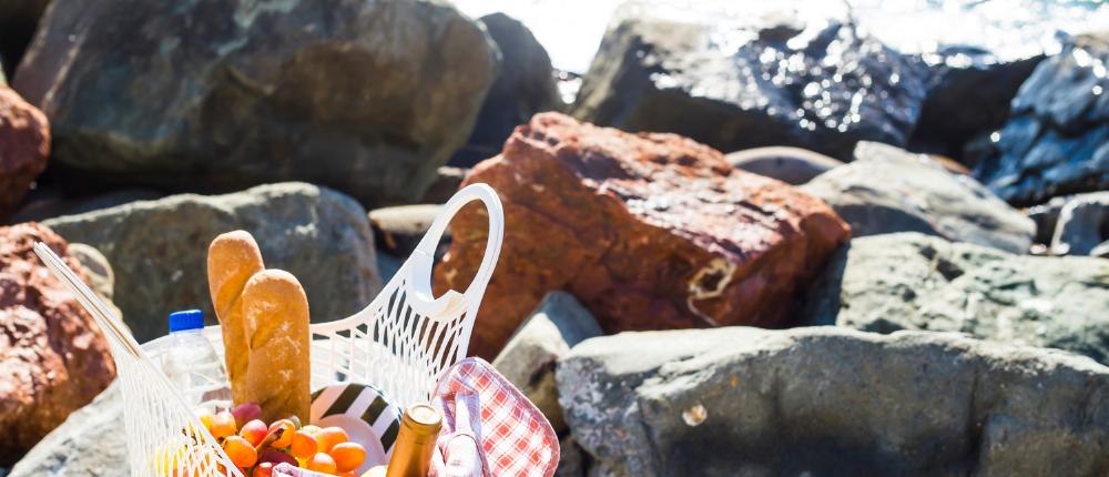 traciestrucker.com seaside picnic.png