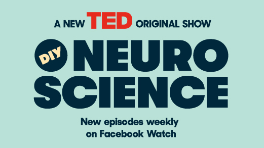 TED -  DIY Neuroscience