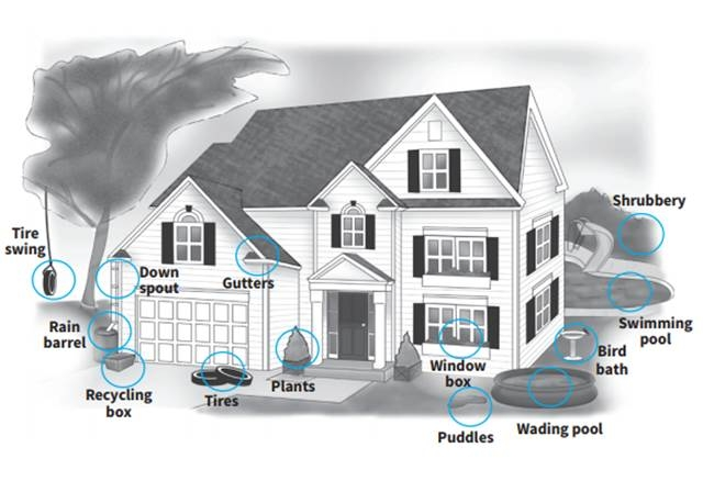 Contact York Region Health Connection to find out how to  clean up mosquito breeding sites around your home , or to report stagnant water in your community.