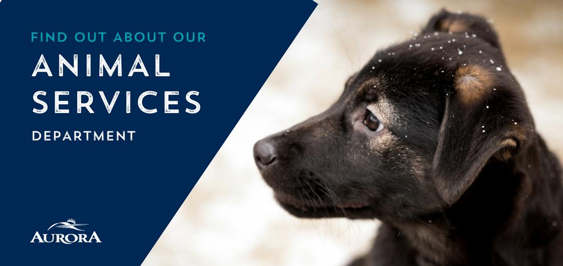 Animal Control Web Banner.jpg