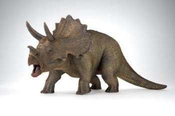 What dinosaur?
