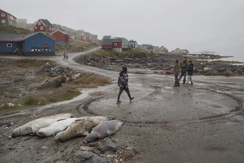 AlinaFedorenko_Kulusuk_Greenland_19.jpg