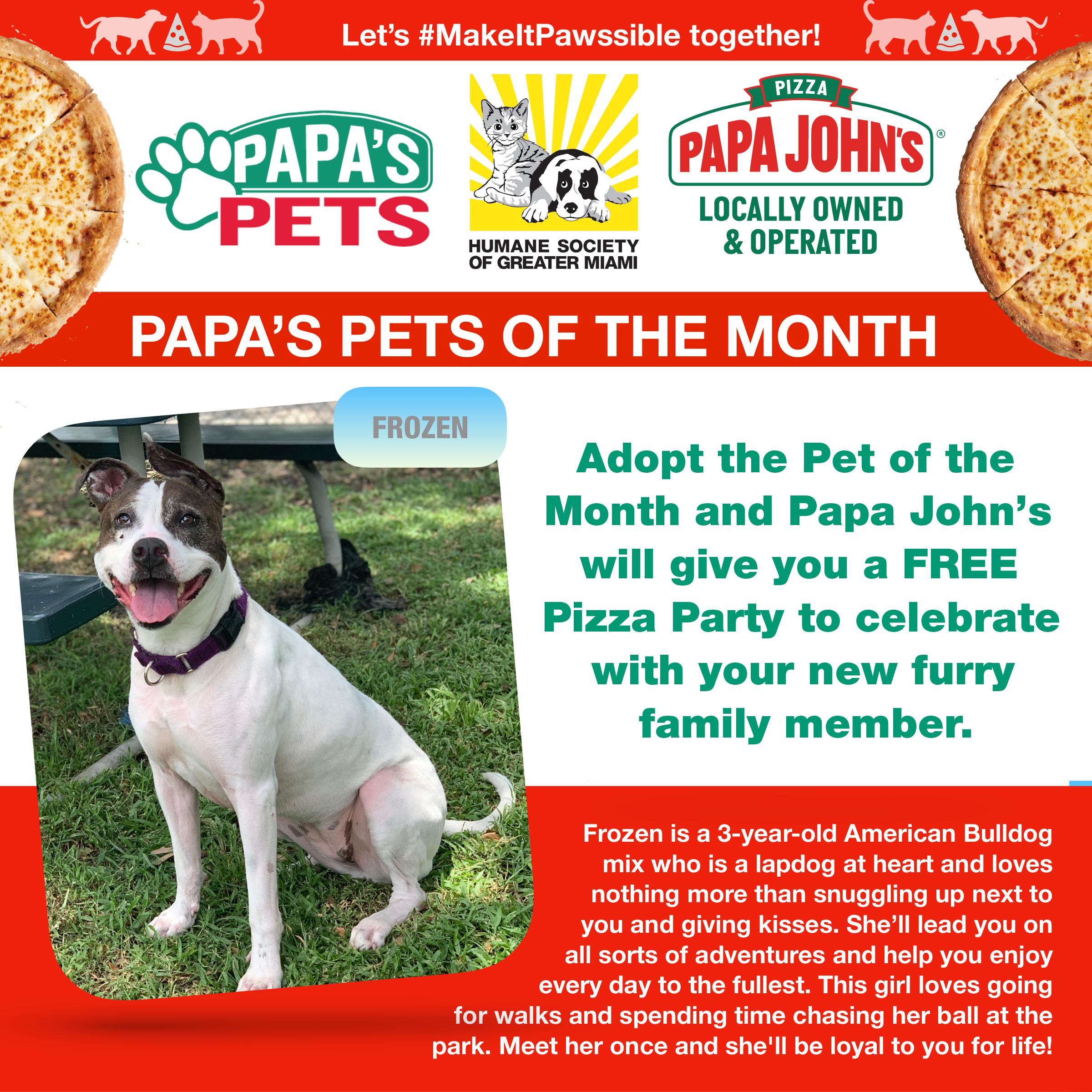 Papa's Pets July Dog 2.jpg