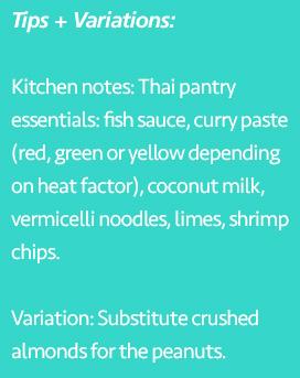 Tips and variations of Thai Skewers