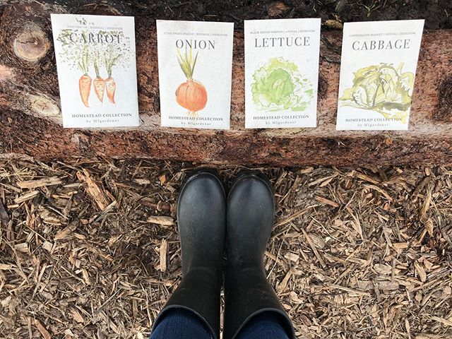 Planted the little hoop in the big hoop house yesterday with the best quality (and the best price!) seeds on the market! Make sure to checkout the newest video on YouTube to see how we are growing food all winter on the #SSLFamilyDad channel. @migardener  seeds less than a dollar, use the SSL10 discount. Healthy food at the lowest price, can't beat it! #eatlocal #farmfresh #farmers4Christ #sslfamilyfarm #growyourownfood #homesteading #michiganfarm #sustainable #migardener #gardening #seeds