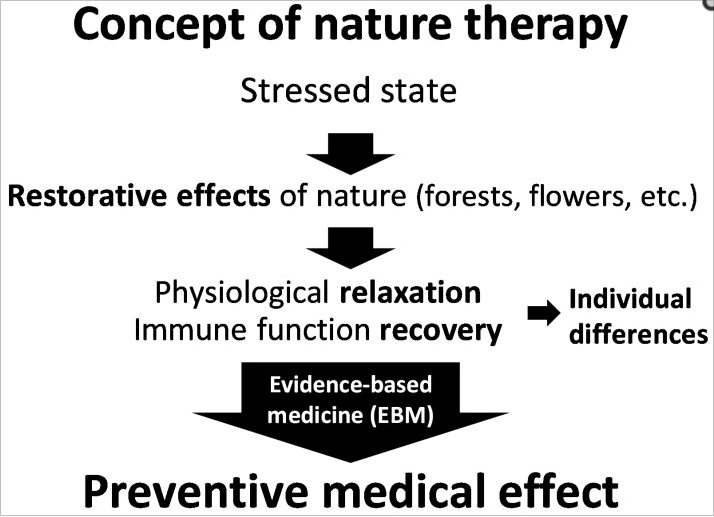 adapted from: https://www.ncbi.nlm.nih.gov/pmc/articles/PMC4997467/