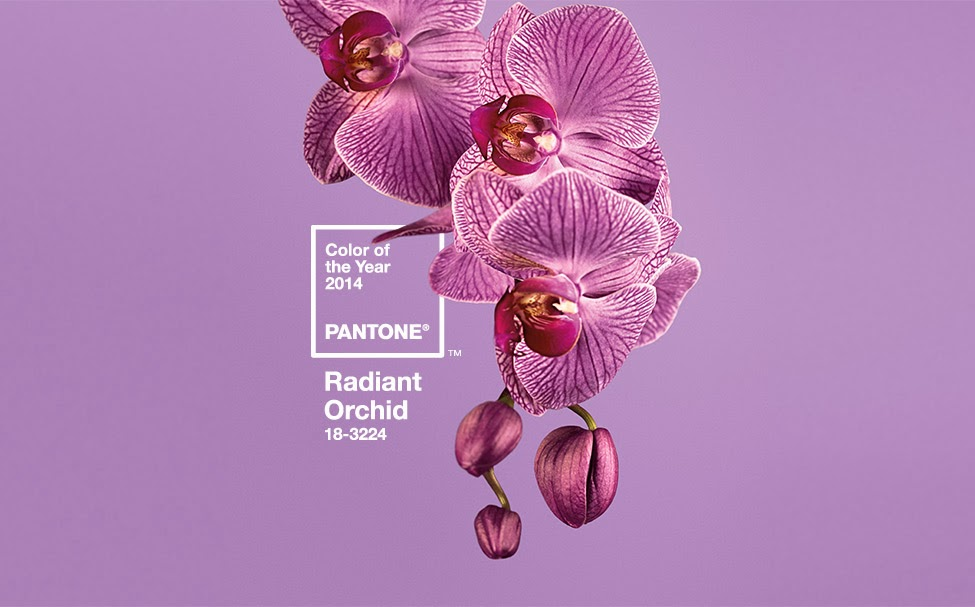 radiant-orchid-2014-color-of-the-year.jpg