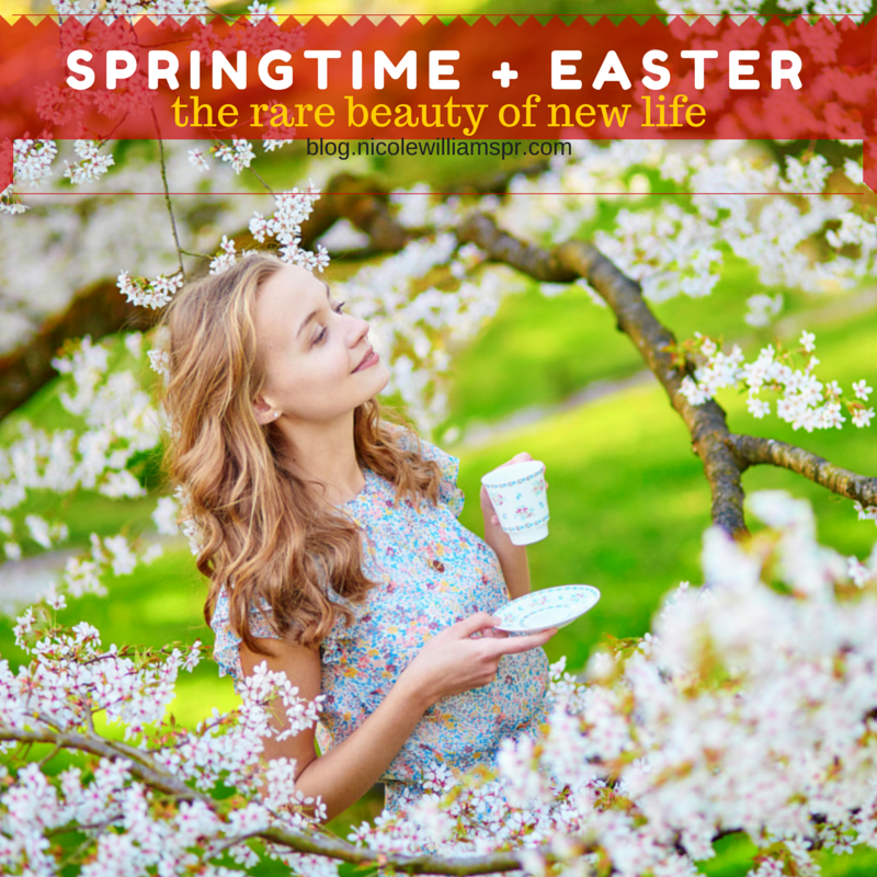 SPRINGTIME + EASTER- the rare beauty of new life.png