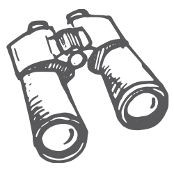 icon-binoculars.PNG