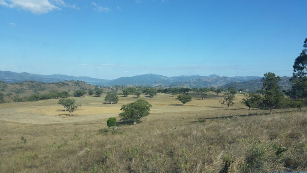 Visit My Farm Australia - Coogah, Blandford NSW