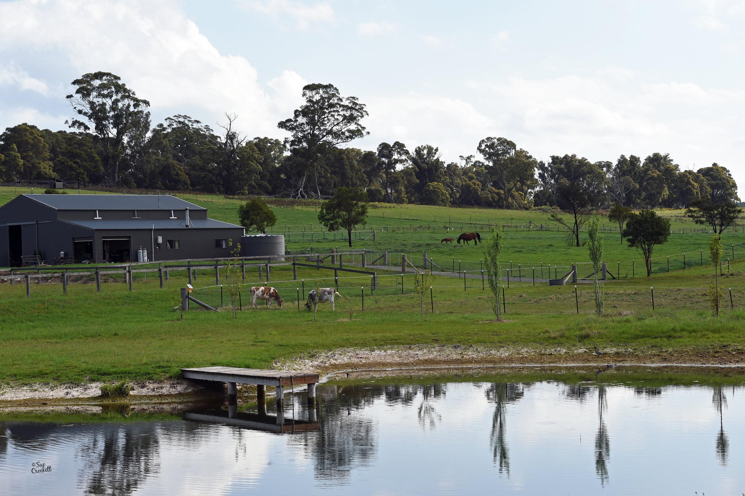 Visit My Farm Australia - Tayen, Wingello NSW